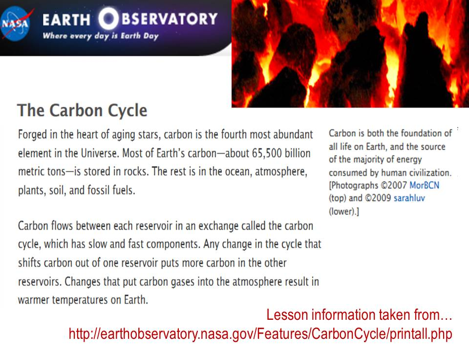 202B U4 Carbon Cycle
